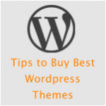 Buy Best WordPress Premium themes